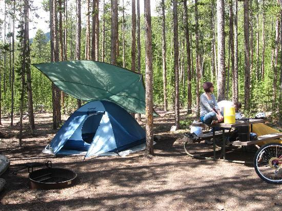 Madison Campground : Home sweet woods