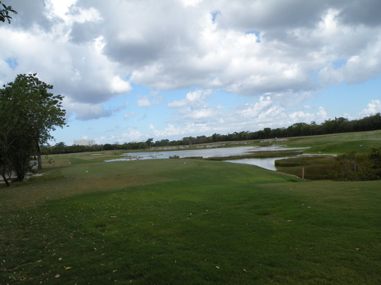 Cozumel Country Club : tee box and fairway
