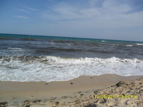 Medina Belisaire & Thalasso : Beach Sea