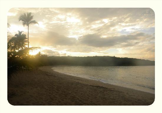 Dorado, Puerto Rico: SUNSET