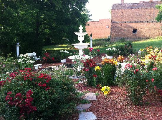 The Star Hotel B&B Inn : The garden