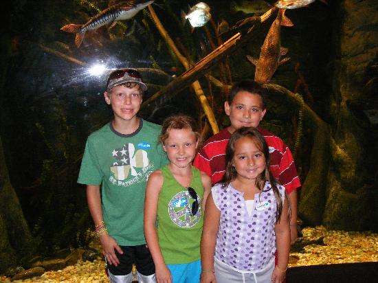 Catawba Science Center: Family fun