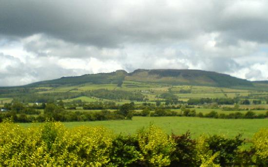 Templemore B&B: View from back of B&B