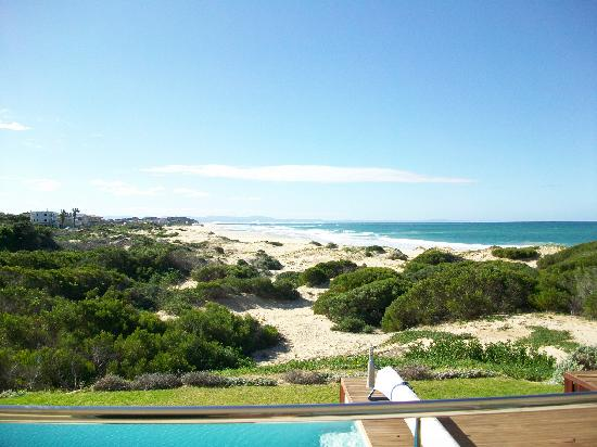 Moya Manzi Beach House: The protected green land