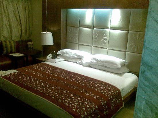 โรงแรมเดอะพาร์ค นิวเดลี: Luxary revisited