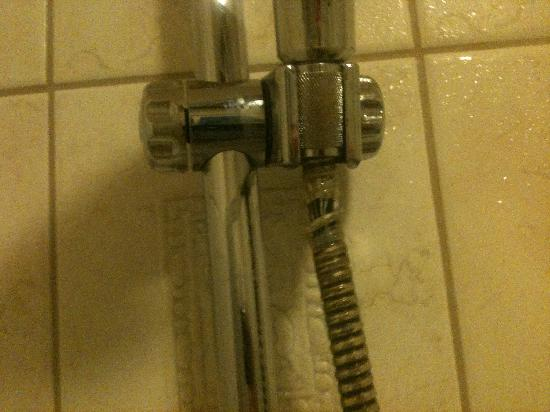 Keizersgracht Apartments: Leaking Shower Hose