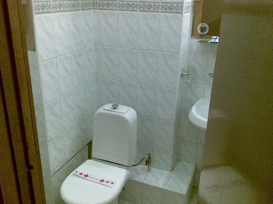 Vostok Hotel: bagno della 331