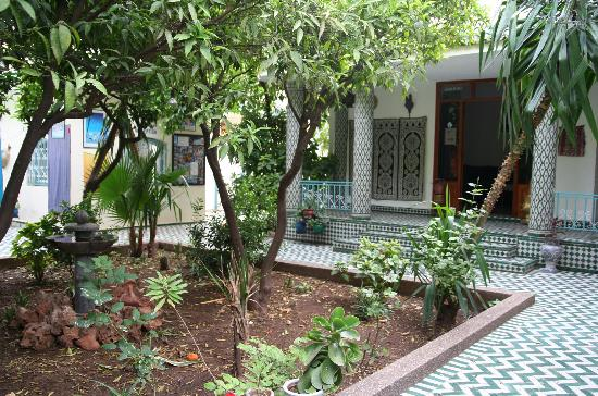 Youth Hostel Fes: Jardin