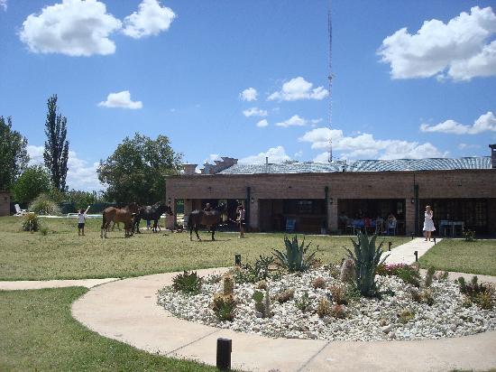 La Carmelita Hotel Rural: Edificio principal