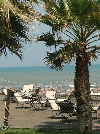 Thalassa Mahdia : vue terrasse plage