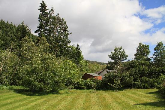 Tigh na Bruaich Bed & Breakfast: View from the front - Nature
