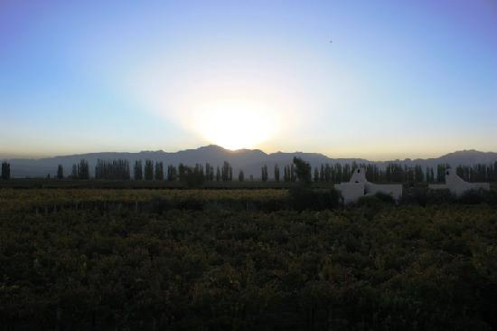 Cavas Wine Lodge: View from terrace at sunset
