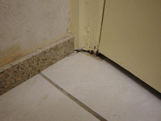 Comfort Inn Toronto Airport: Behind the door in the bathroom