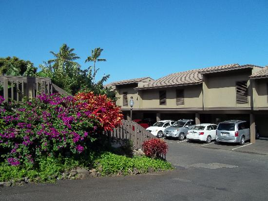 Kahana Sunset: View of parking, covered at door