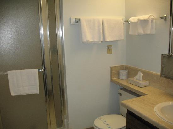 Silver Sage Inn: Bathroom
