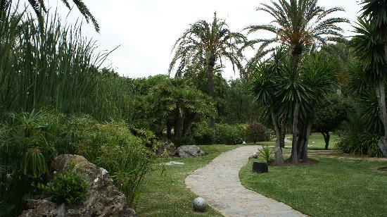 Don Carlos Leisure Resort & Spa: Exquisite garden on the way to the beach