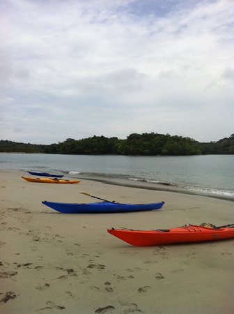 Boquete Outdoor Adventures: kayaking on another gorgeous island