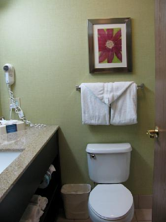 Comfort Suites Highlands Ranch Denver Tech Center Area: view of Bathroom... Very Nice!