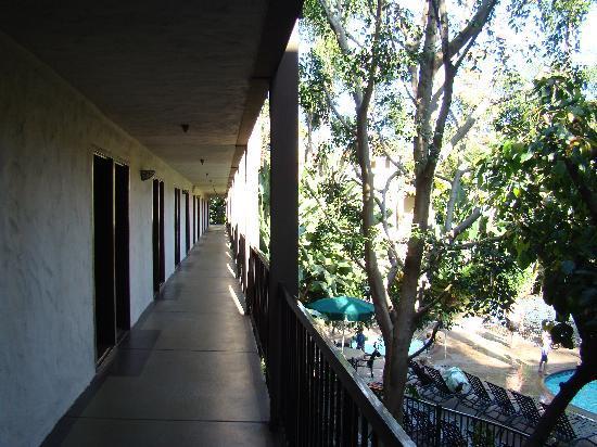 Radisson Suites Hotel Buena Park: Coridor