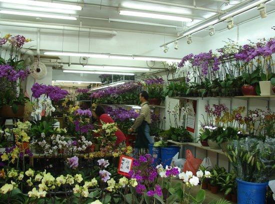 Flower Market Road: Blumenladen