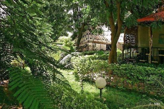 Auberge Djamilla: Jardin