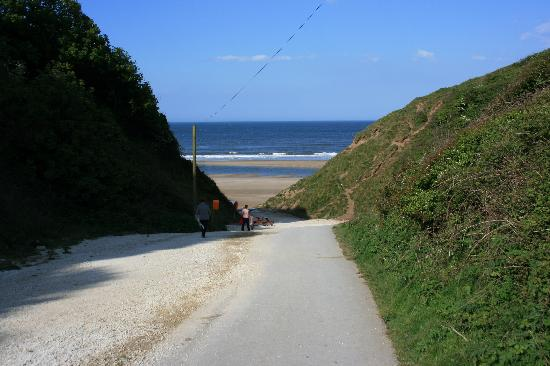 Reighton Sands Holiday Park - Haven: Path down to the beach