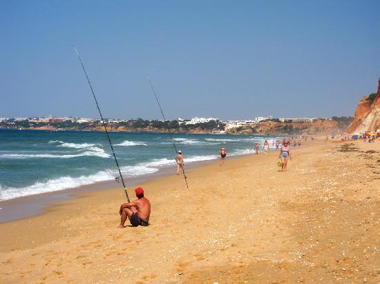 Adriana 海灘全包式渡假飯店照片