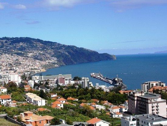 Yellow Bus Tours Funchal : Panoramic view, Funchal