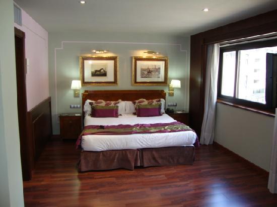Hotel Plaza Andorra: habitacion