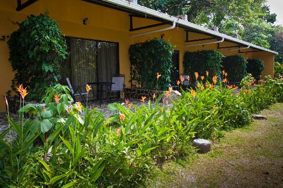 Tirimbina Lodge: Jardines y habitaciones