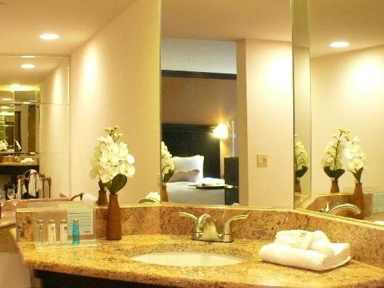 Hampton inn suites hoffman estates updated 2017 prices - Hilton garden inn hoffman estates illinois ...