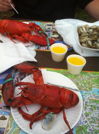 Beach Plum Lobster Farm Lobster and Clam Supplier: The best lobster we had in Maine!