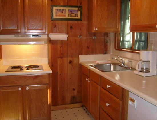 Mountain Lake Cottages: Cottage kitchen room/suite 8