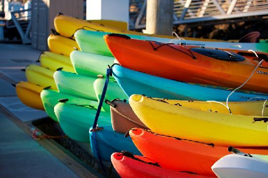 Oxnard, Californien: Kayaking at Channel Islands Harbor
