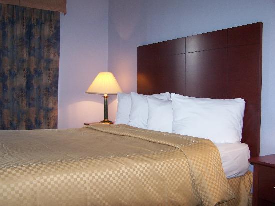 Quality Suites Mont Sainte Anne : Bed room