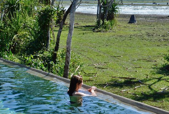 Bamurru Plains: Pool in nature