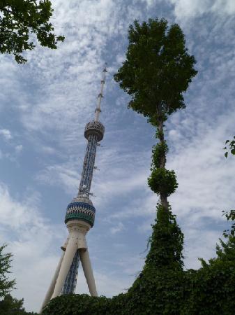 Torre de la Televisión de Tashkent: The tower
