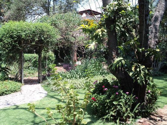 Los Artistas B & B: Gardens