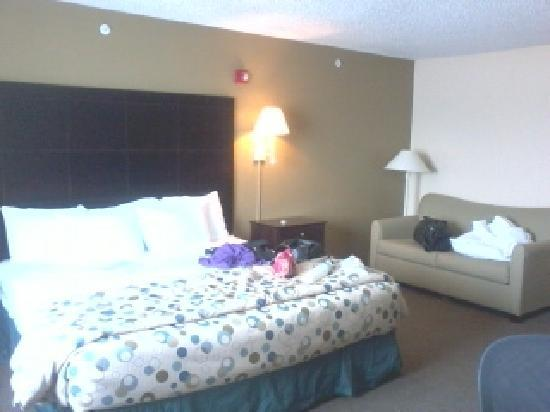Hotel Balch Springs: King Bed w/ Sleeper sofa