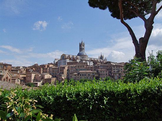 Ristorante San Domenico: Vista dai tavoli esterni Camporegio