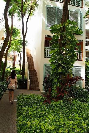Chom View Hotel: garden