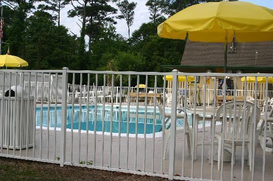 Wilmington KOA: Shot of the pool (more pics at