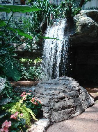 Gaylord Opryland Resort & Convention Center: One of many waterfalls