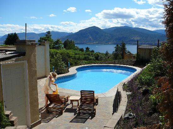 Apple d'or: Private pool with a View!