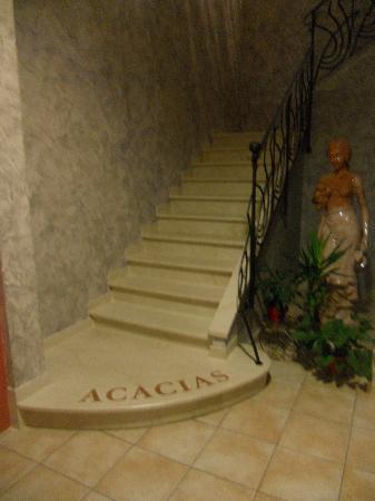 Photo of Hotel Acacias Arles
