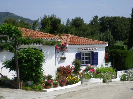 Skiathos, Greece: On our walk from Vromolimnos to Kanapitsa