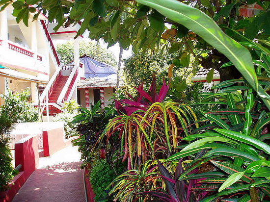 The Room Picture Of Sunset Cottages Calangute Tripadvisor