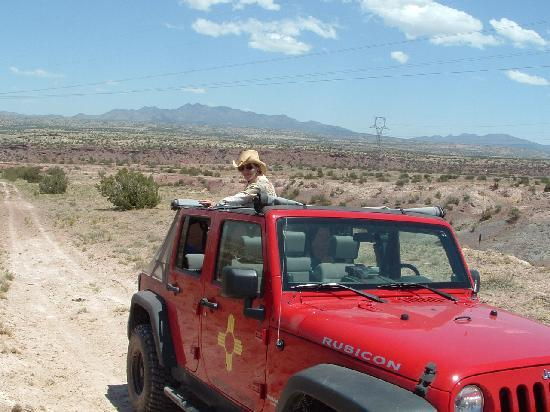 Albuquerque, NM: Great Vantage Point to View Wild Horses