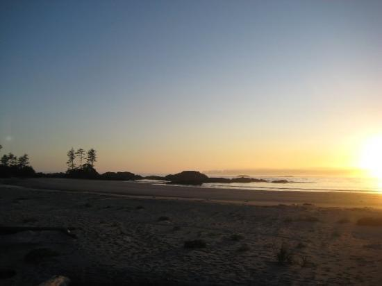 Walk the Wild Side Trail: Great sunset on Wild Side