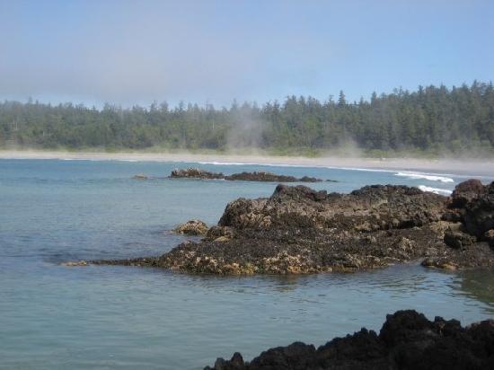 Walk the Wild Side Trail: On the rocks near Cow Bay